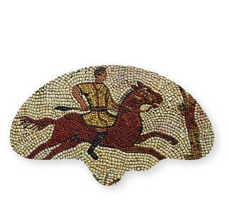 <p>Adaptation<br />Polypropylene</p>
